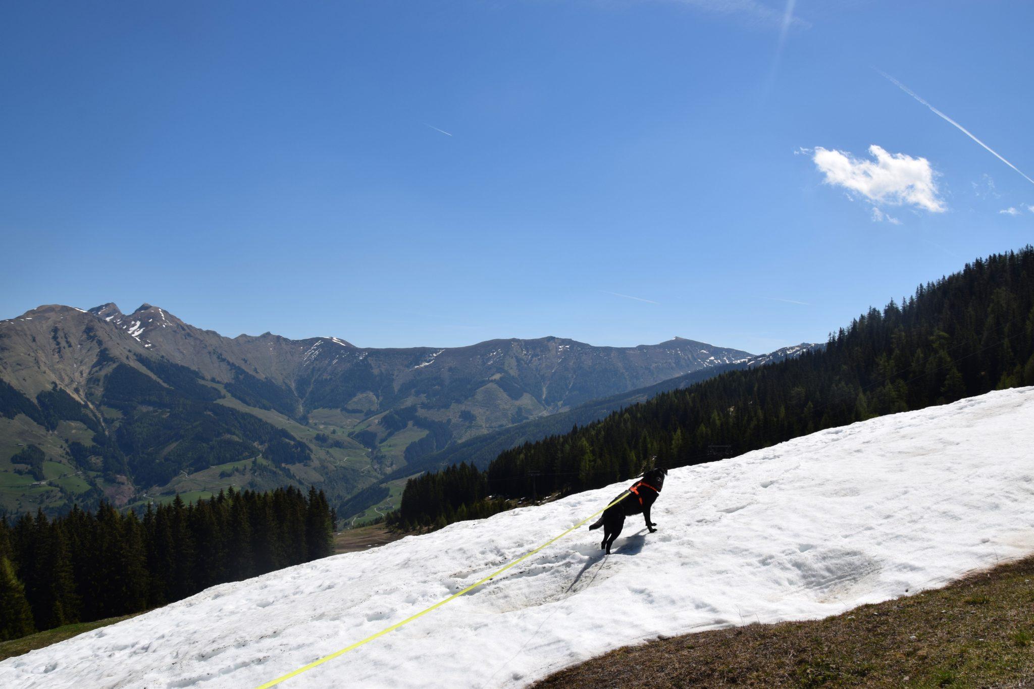 Ausblick Schnee Wanderung Rauris