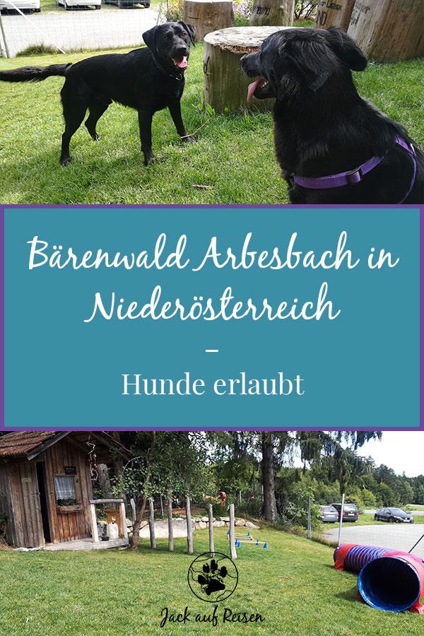 Bärenwald Arbesbach Hunde Pin