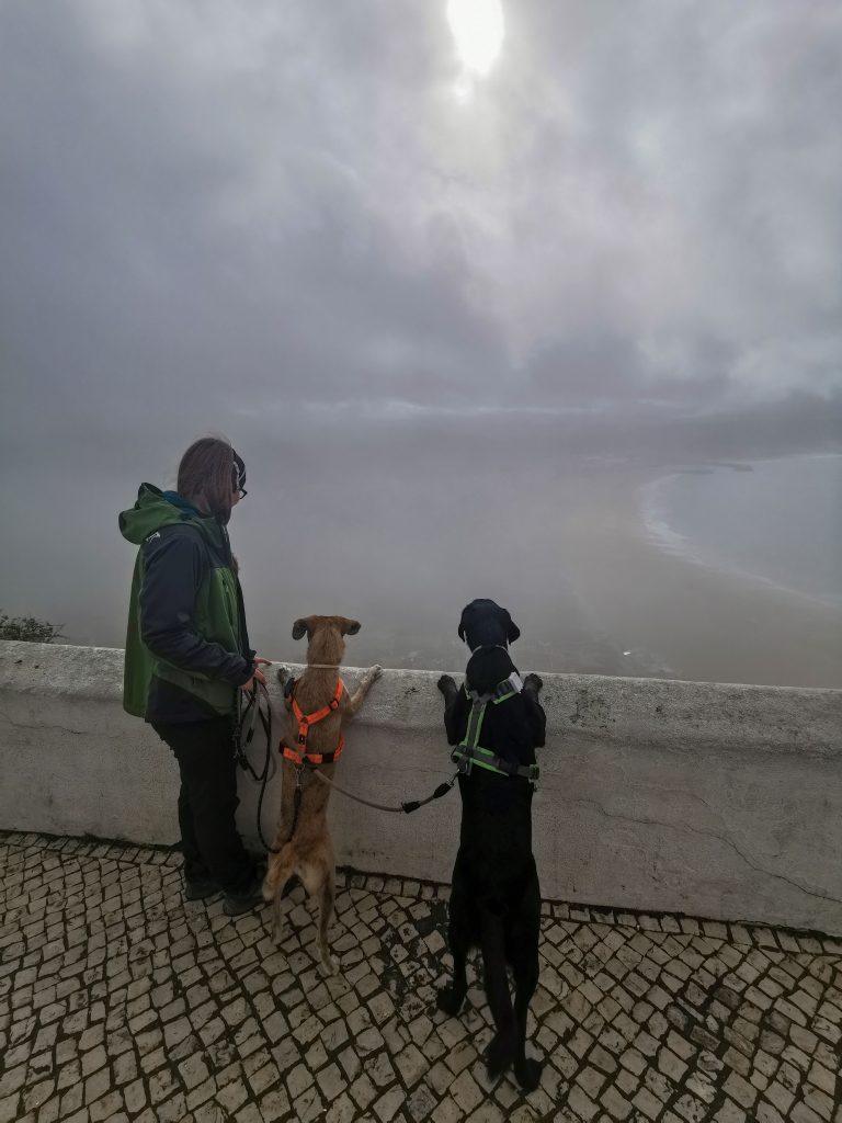 Besuch in Nazaré