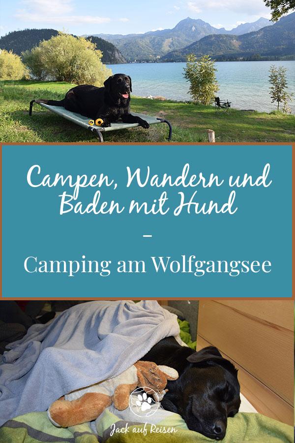 Campen, Wandern und Baden mit Hund