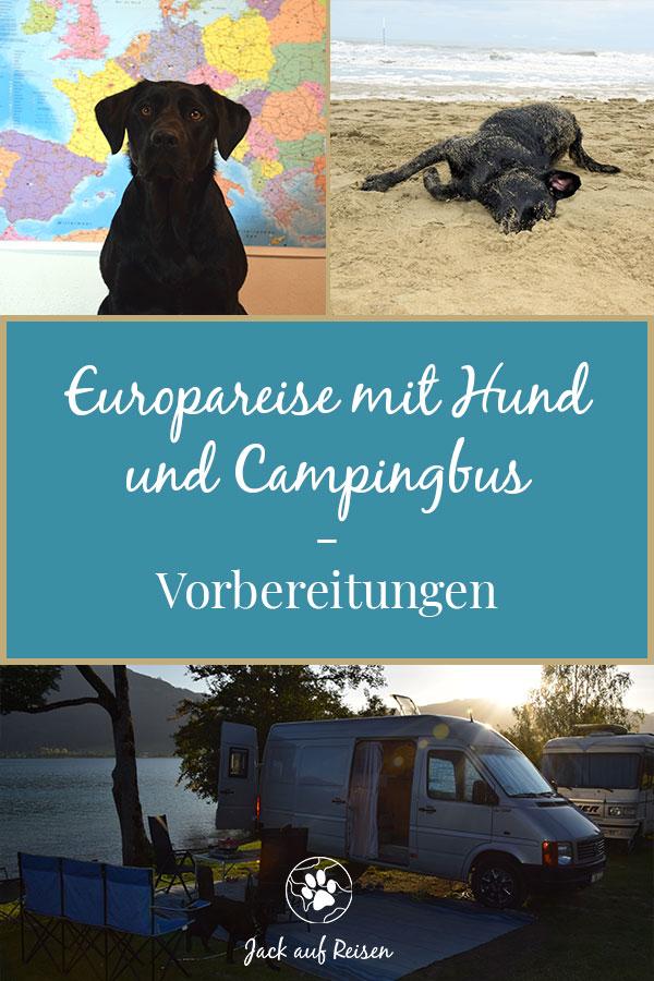 Europareise mit Hund Vorbereitungen Pin
