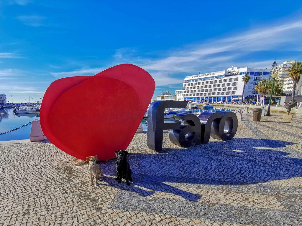 Faro Algarve mit Hund