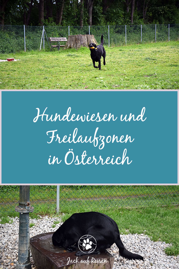 Hundewiesen in Österreich