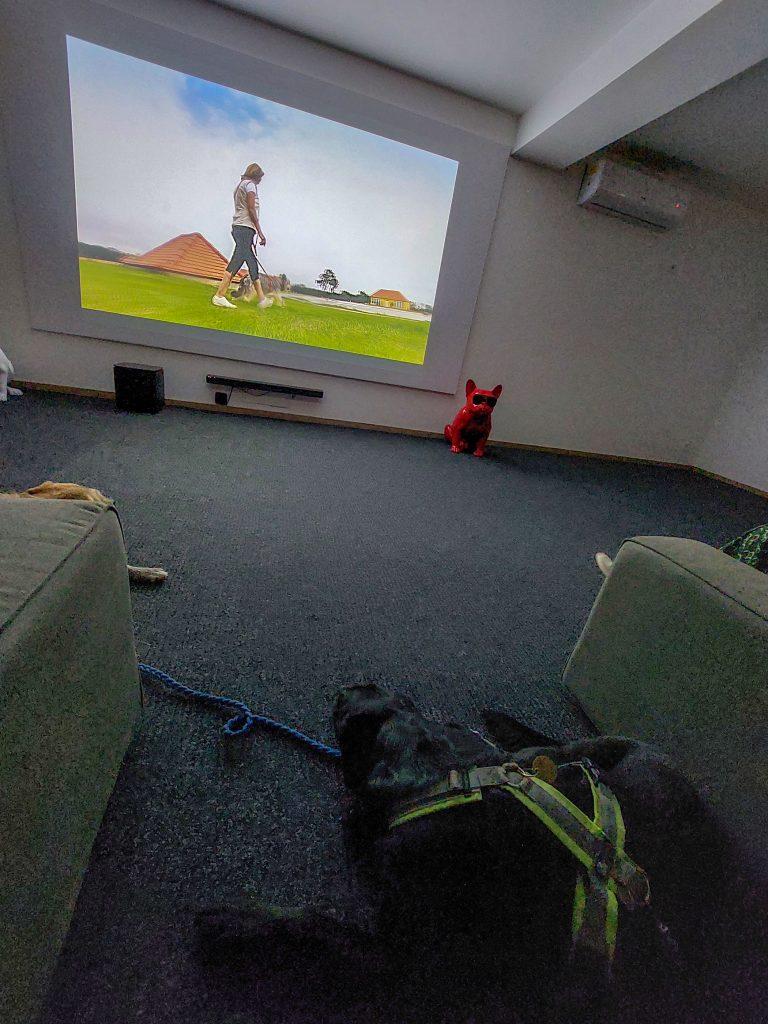 Kino mit Hund Pro Village