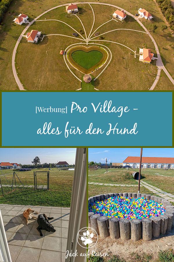 Pro Village Pin