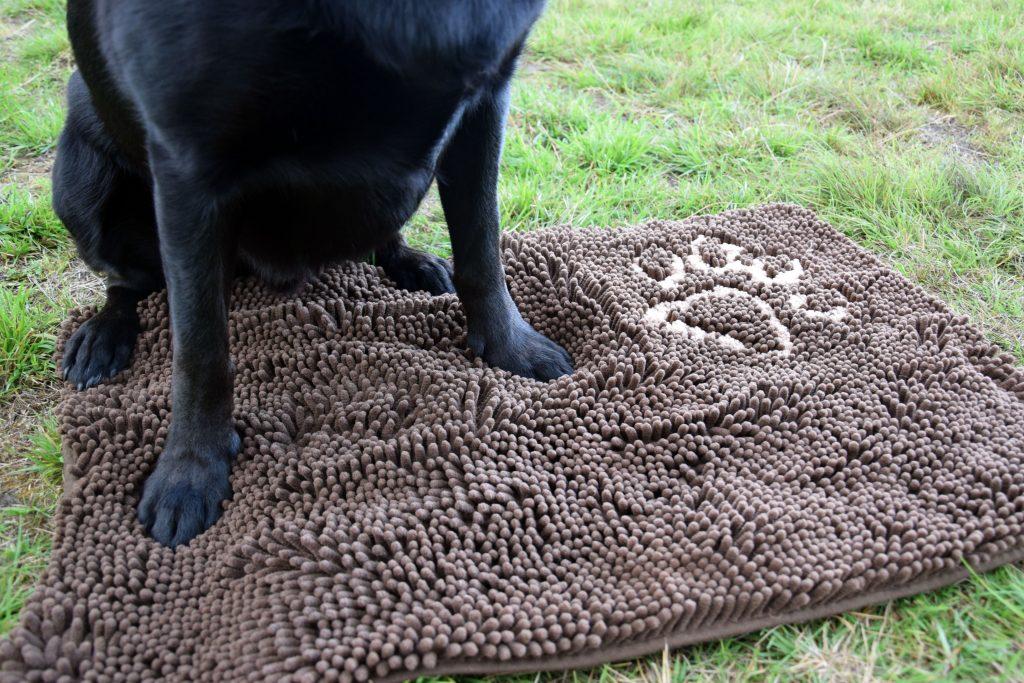 Schmutzfangteppich Hund
