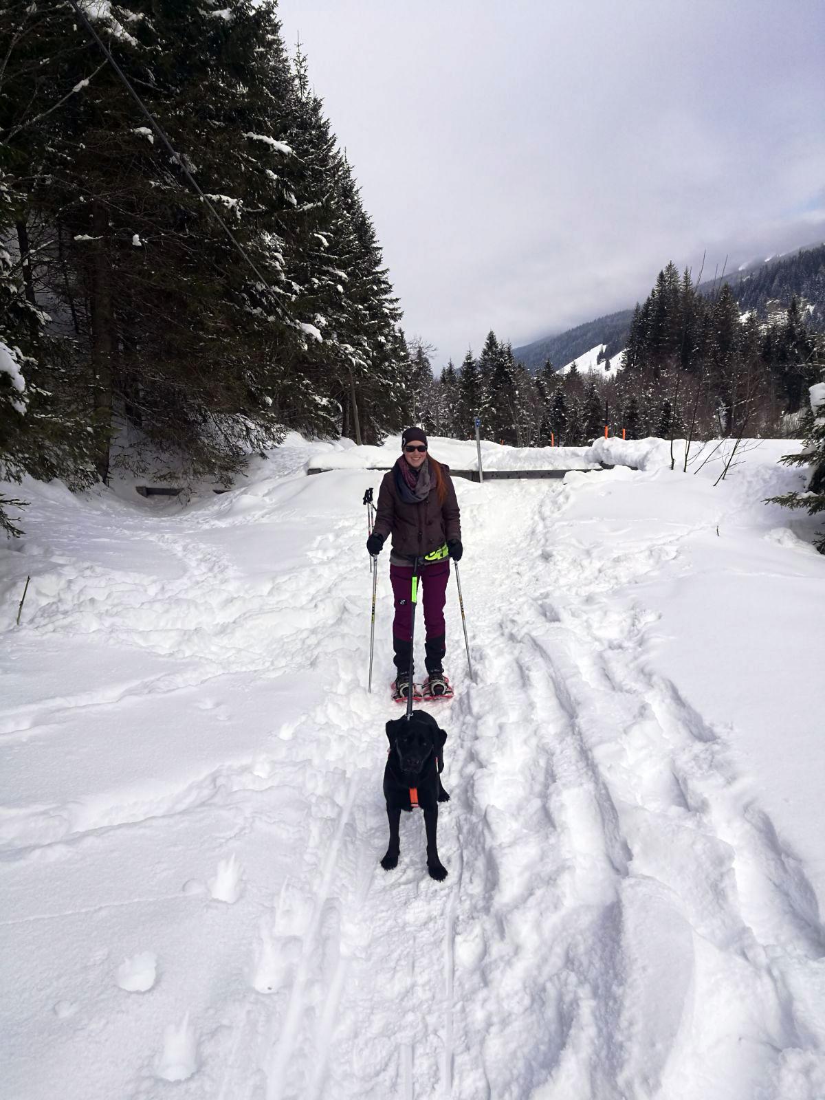 Schneeschuhwandern mit Hund