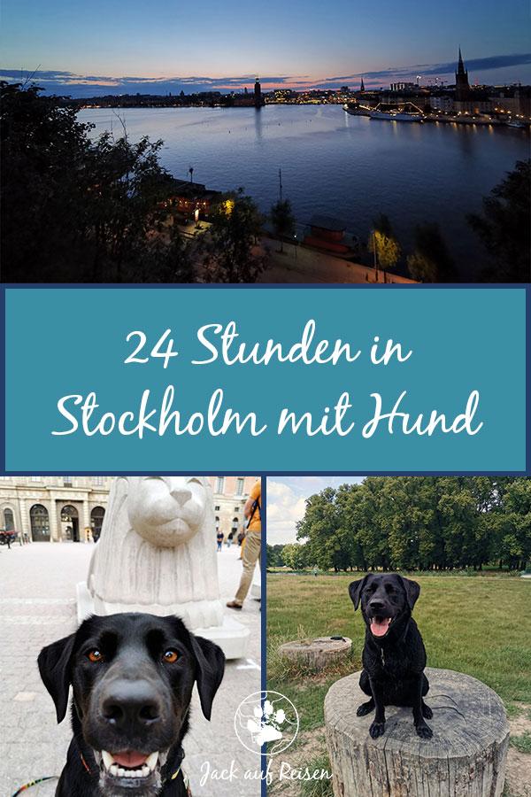 Stockholm mit Hund Pin