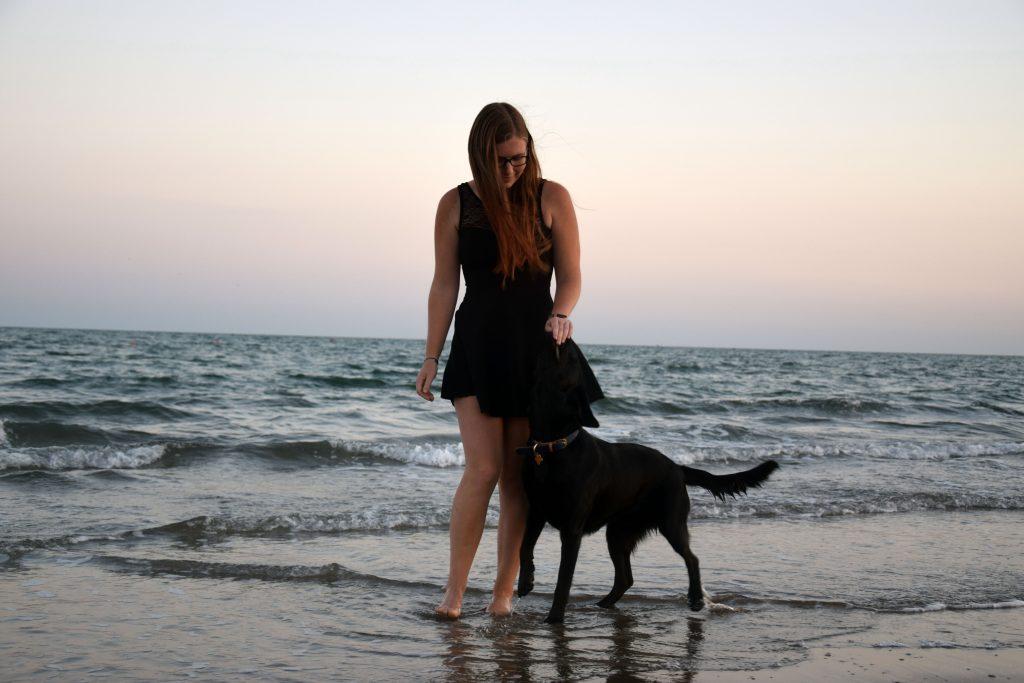 Strandspaziergang Hundestrand Union Lido