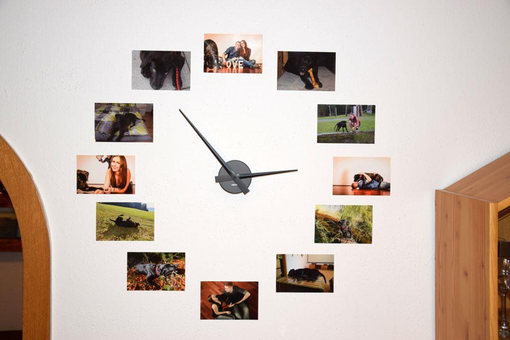Uhr mit Hundefotos