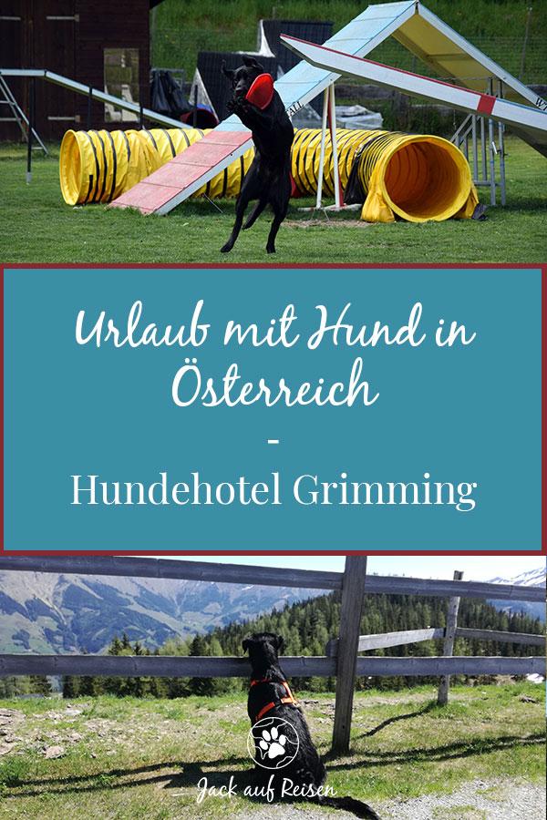 Urlaub mit Hund in Österreich - Hundehotel Grimming