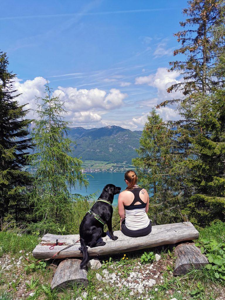 Wandern am Wolfgangsee mit Hund