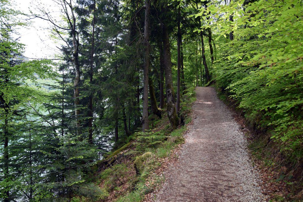 Wanderweg am Fuschlsee