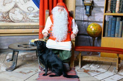 Weihnachtsmanndorf mit Hund