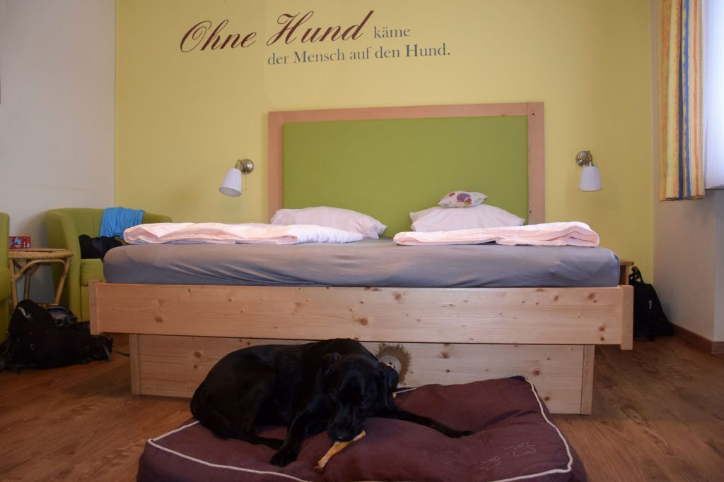 Zimmer Mops im Hundehotel Grimming