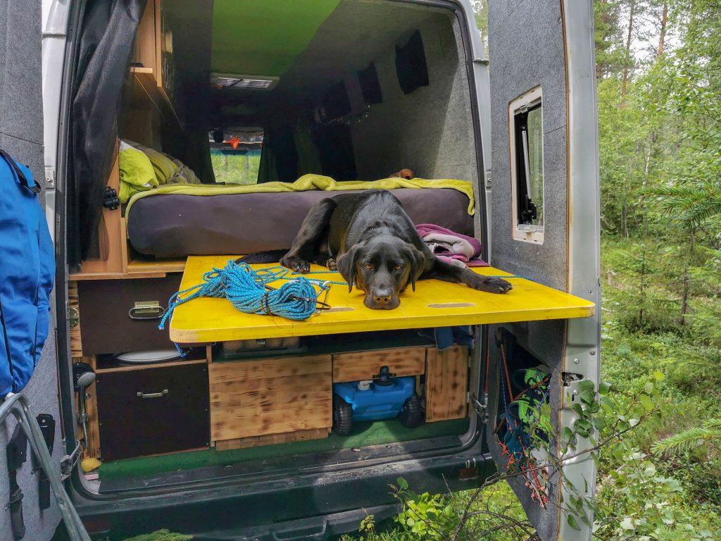 ausziehbares Bett Campingbus
